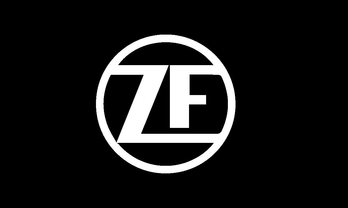 zf-01